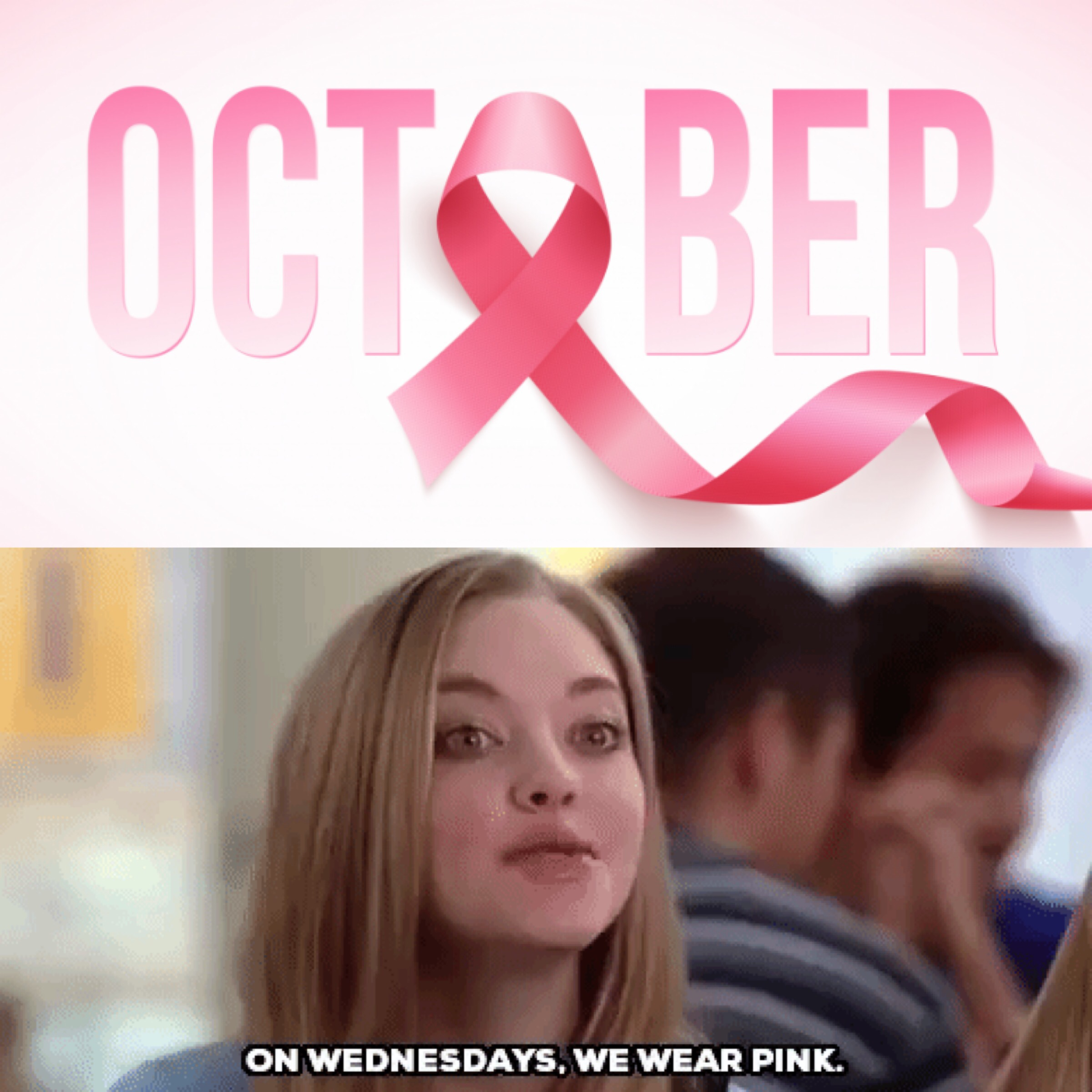 """""""On Wednesday's We Wear Pink"""""""