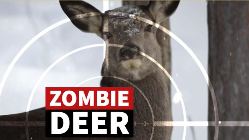 WHAT THE HELL IS ZOMBIE DEER DISEASE?!?!?! [It is in PA]