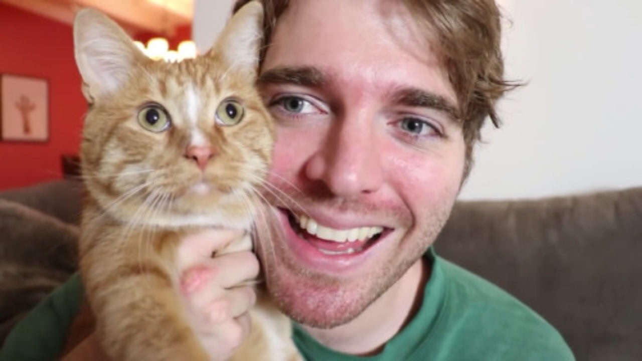 YouTuber Shane Dawson Apologizes For Joking About Sexual Acts With His Cat