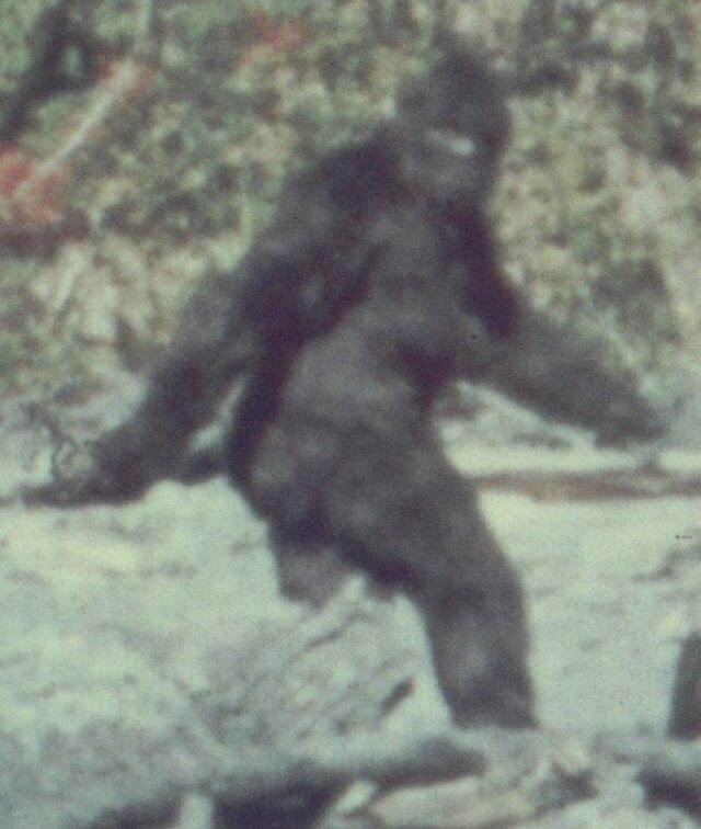 FBI Releases Bigfoot Files