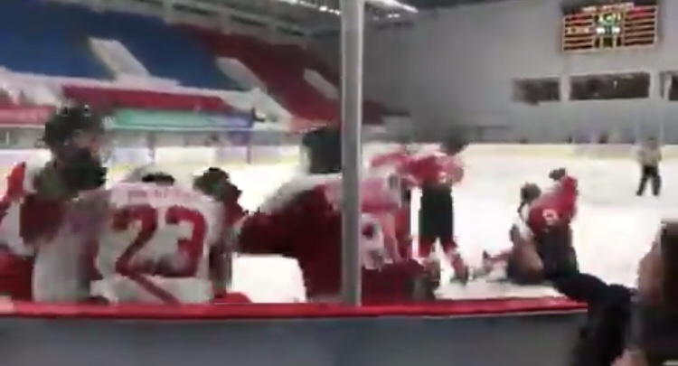 If you can't beat them… Beat them up! [Youth hockey Fight video]