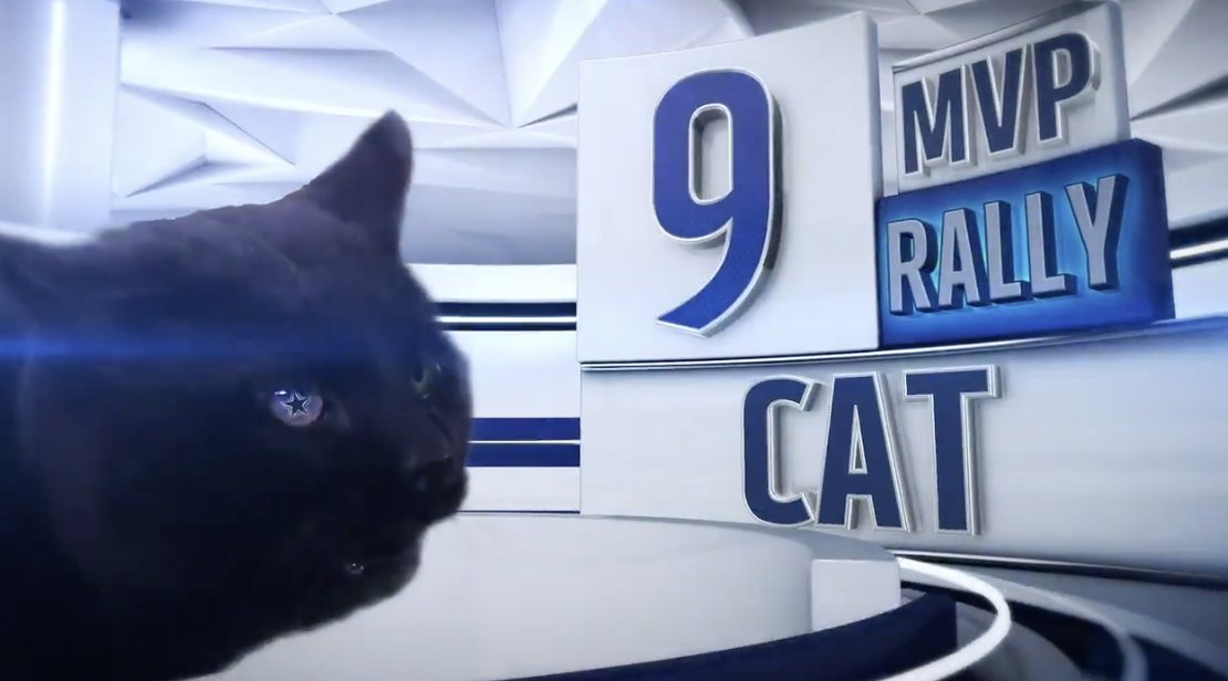 The Cowboys Think The MNF Cat's Life Is Some Joke And It's Borderline Cruelty To Animals