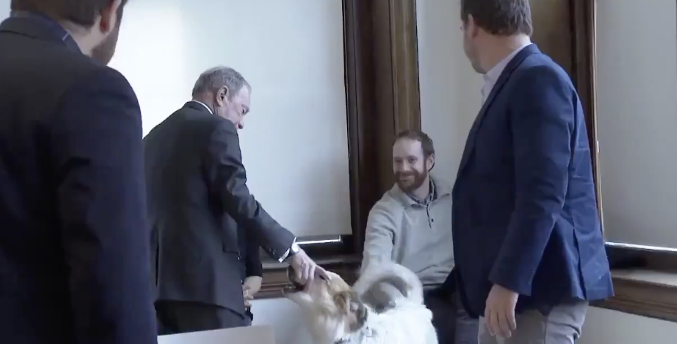 Presidential Candidate Mike Bloomberg Just Tried To Shake Hands With A Dog's Mouth