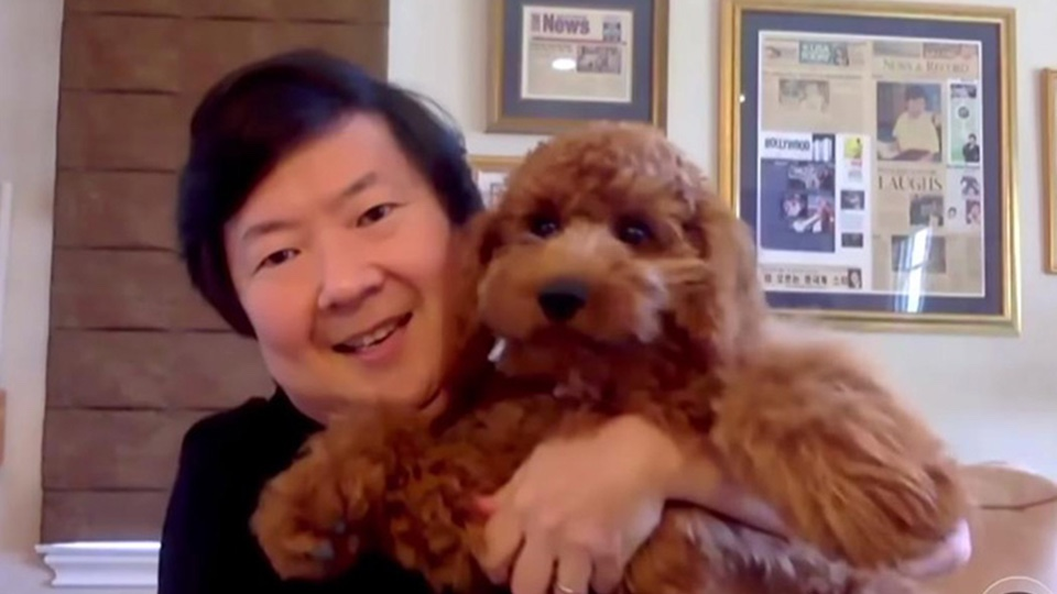 Ken Jeong Has The Cutest Dog Ever