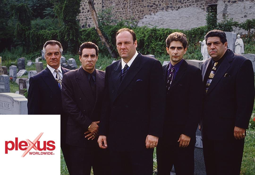 The Sopranos But Instead Of A Crime Organization They Run A Pyramid Scheme.